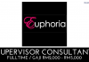 Supervisor Consultant di Euphoria (1)