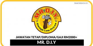 Mr. D.I.Y