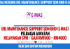 ERL Maintenance Support Sdn Bhd (E-MAS)