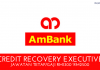 Credit Recovery Executive AM Bank