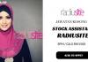 Stock Assistant Radiusite
