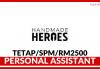 Personal Assistant di Handmade Heroes