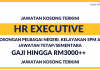 Eksekutif Sumber Manusia (HR Executive)