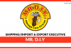 MR DIY ShippingImport & Export Executive