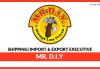 MR DIY ShippingImport & Export Executive