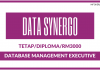 Database Management Executive di Data Synergo
