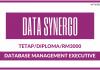 Database Management Executive di Data Synergo