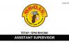 Mr. D.I.Y ~ Assistant Supervisor