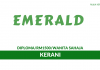Efficient Emerald ~ Kerani