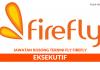 FlyFirefly ~ Eksekutif
