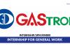 Gastronics ~ Internship for General Work