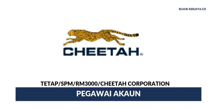 Cheetah Corporation ~ Pegawai Akaun