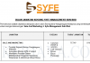 Syfe Management ~ Sale And Marketing