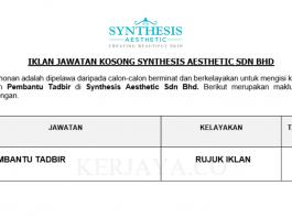 Synthesis Aesthetic ~ Pembantu Tadbir